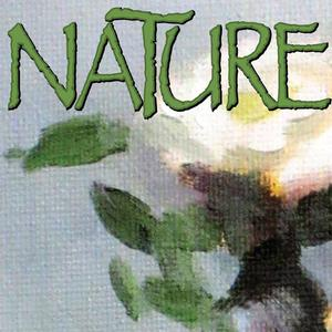 Artists Reception for Nature, a new exhibit at Gallery35