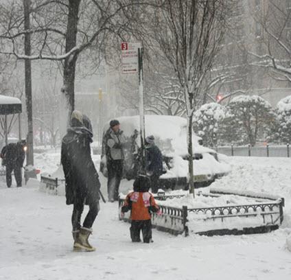 Winter Storm Jonas Blankets Murray Hill
